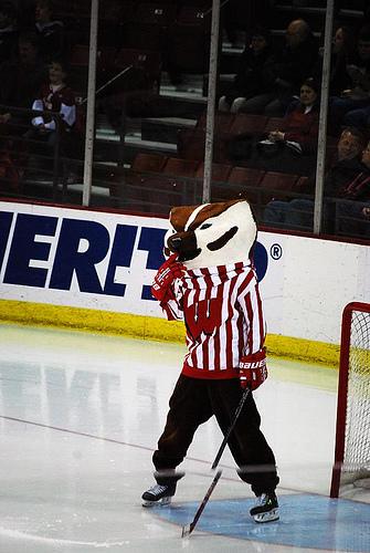 Badger Hockey - 1/2/09